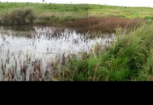Construção de 15 Micro Projetos de Irrigação e Melhoramento de 9 Canais de Irrigação na comunidade de Calenga, município de Caala, província de Huambo