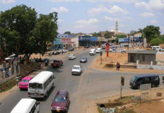 Preparation of a Sanitation and Drainage improvement Strategy and Master Plan for the city of Lilongwe